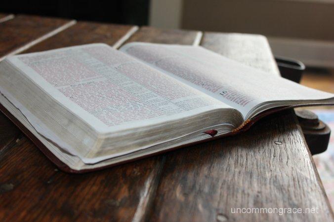 UG Open Bible