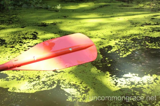 UG Paddle